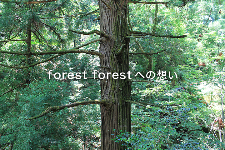 forest forestへの想い