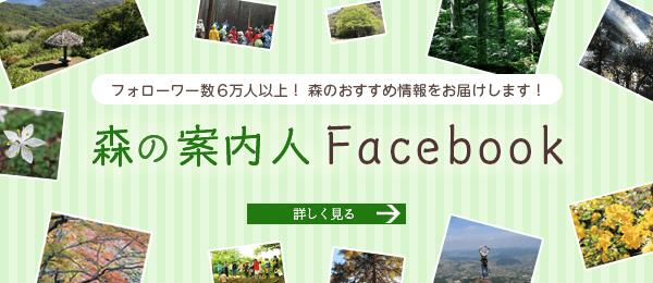 森の案内人 Facebook