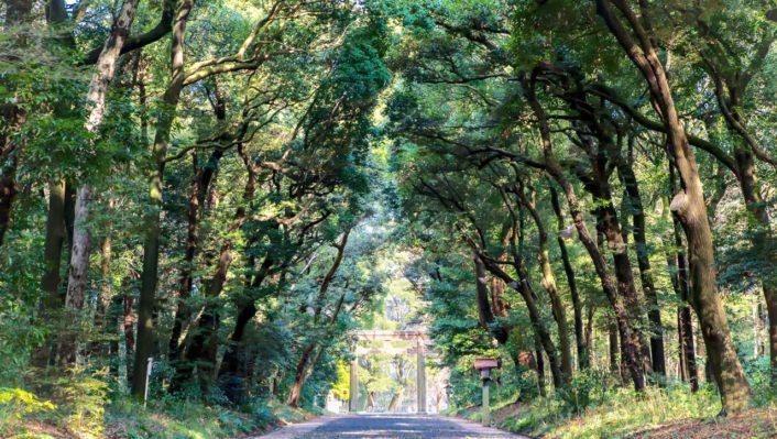 JR東日本さんと、東京・山手線の駅を起点に、森ツアーをさせてもらいます。
